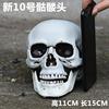 New Skull No. 10