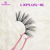 LXPLUS-16