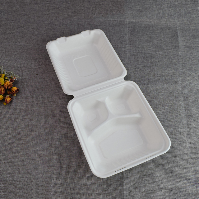 180 Days Short Biodegrade Period Disposable Compostable sugarcane Food Container Biodegradable bagasse Take Away Food Box