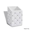 Holder-White cubic