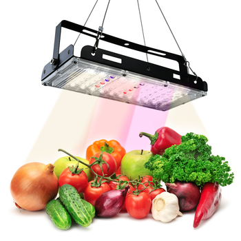50W 100W LED Grow Light Waterproof Phytolamp Phyto Growth Lamp Full Spectrum Plant Lighting For Indoor Plant