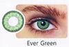 HW- Ever Green