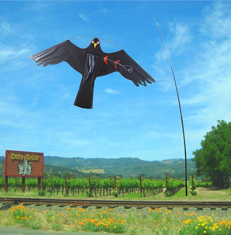High quality bird eagle kite scared bird kite