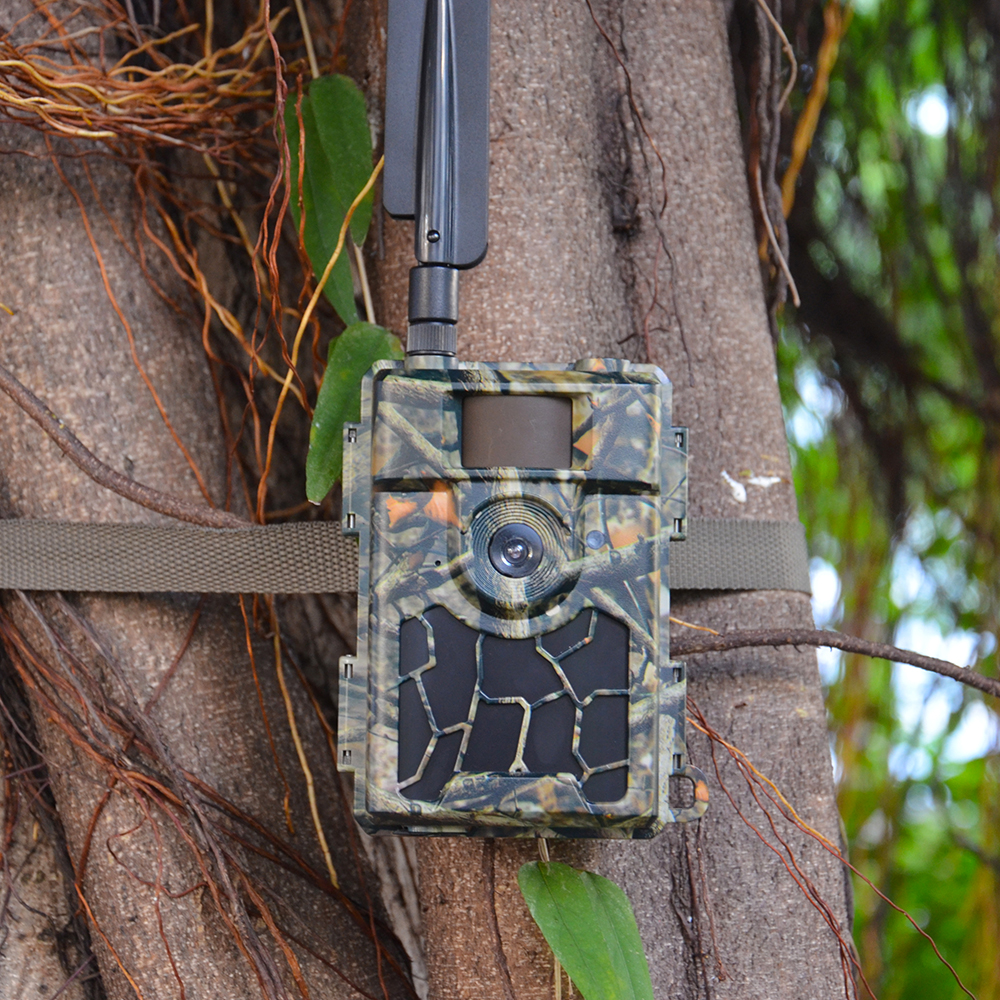 Forest Surveillance Camera 24MP Photo Traps PIR No Glow IR LEDs Night Vision Infrared Hunting Camera