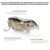 Lifelike 3D eyes ABS plastic hard rat fish lures , sinking small artificial fishing mouse lure
