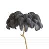 Dark Grey Feather