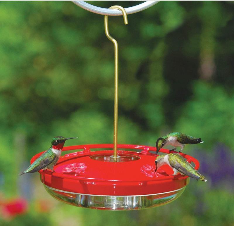 Pemberi Makan Air Burung Kolibri Gantung Buy Makanan Burung Kolibri Bird Feeder Burung Air Feeder Product On Alibaba Com