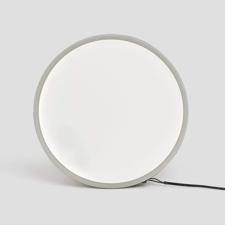 Competitive Price 40w High Quality Outdoor Large Round Led Panel Light With Ce Rohs