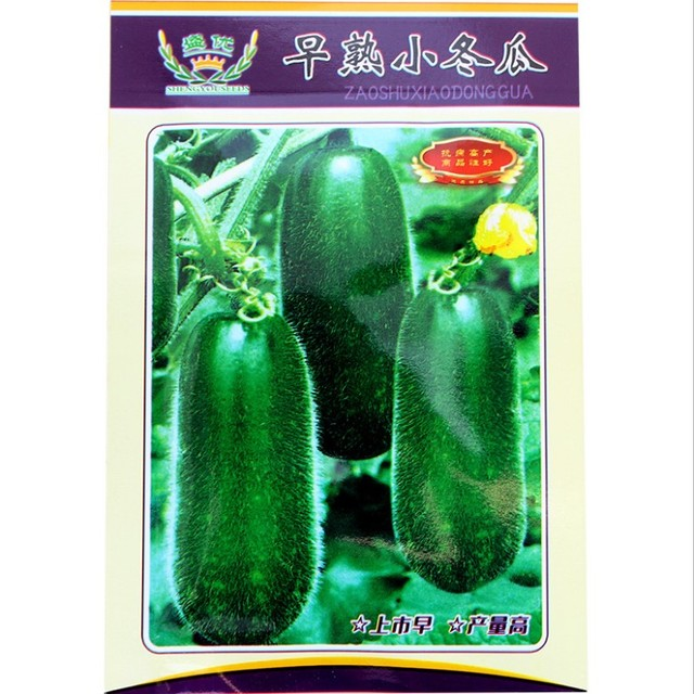 Touchhealthy supply delicate wax gourd seeds/Benincasa hispida seeds 5 gram/bags