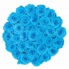 高輝度ブルー