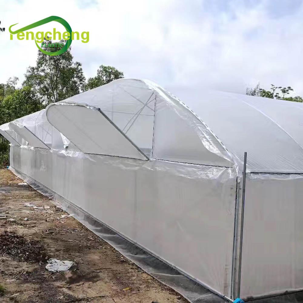 200 микрон усиленная полиэтиленовая пластиковая прозрачная цветная плетеная пленка для теплицы для сельского хозяйства