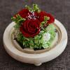 Три розы на белом фоне