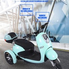 cheap indian made electric tricycle adults