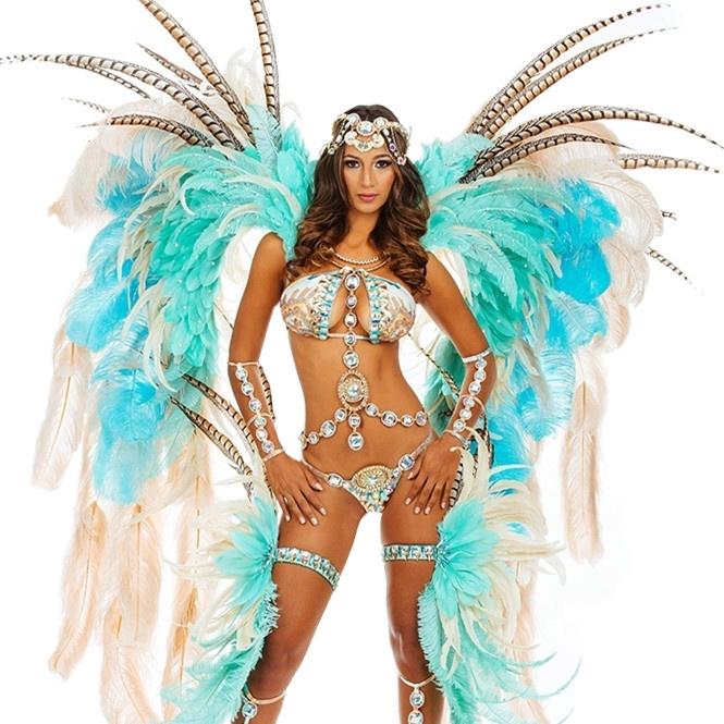 handmade Hill Back Line lady Carnival costume costume , dancing performance costume , samba dance costume