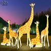 5 pcs giraffe