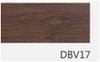 DBV17