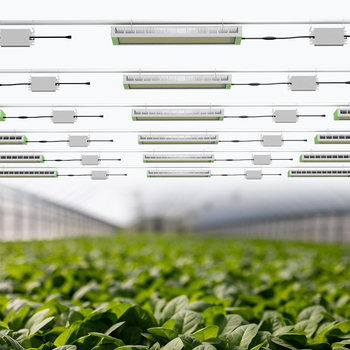 Horticulture greenhous light high quality full spectrum plant led grow lights for the greenhouse industry growth