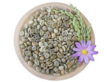 The Best Quality GREEN COFFEE BEANS - High Quality of Product - VIET NAM GREEN COFFEE BEANS