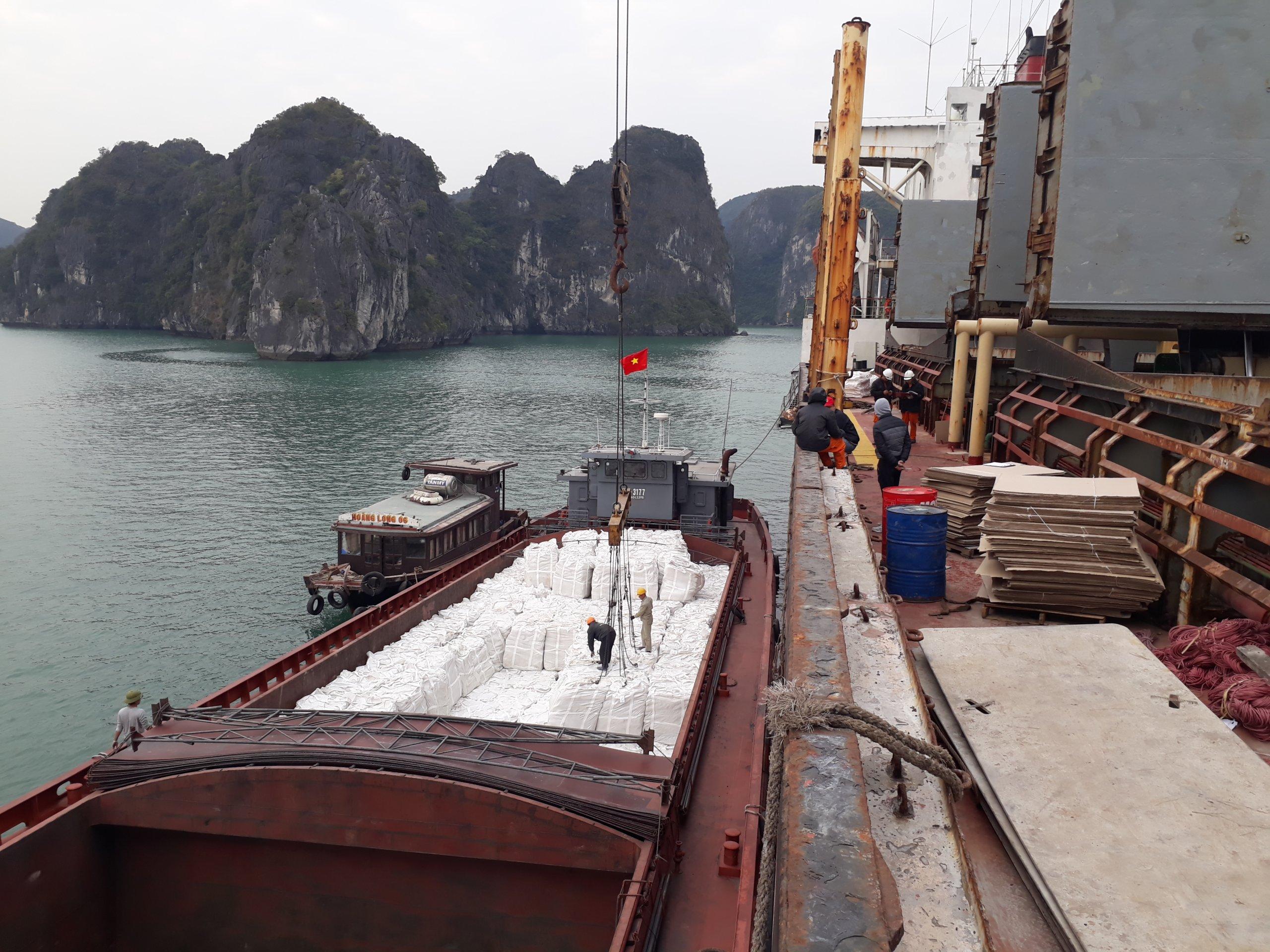 Vietnamese cement OPC with internation cement price