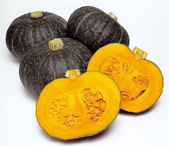 Good Quality Hokkori Pumpkin