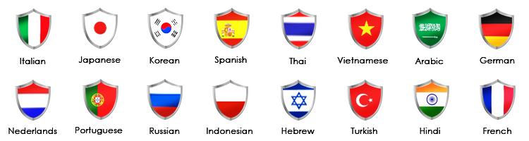 Multi-Language-1.jpg