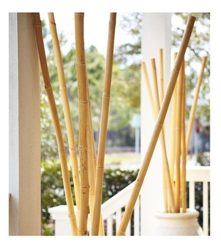 Bamboo Poles Construction- The Best Price Bamboo pole -Bamboo Poles for Sale [Ws0084587176063]