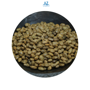 Machine Cleaned High Quality Bulk Supply Natural Pinto Beans