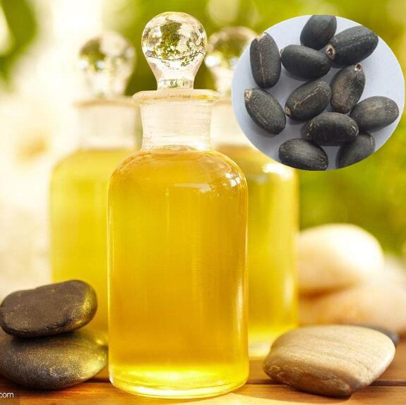Jatropha Oil,Jatropha Oil Biodiesel Crude & Refined - Buy Wholesale Cheap Bulk Refined Jatropha Oil For Sale,High Value New Refined Jatropha Oil For Human Best Use,Bulk Factory Direct Supply Best Refined Jatropha