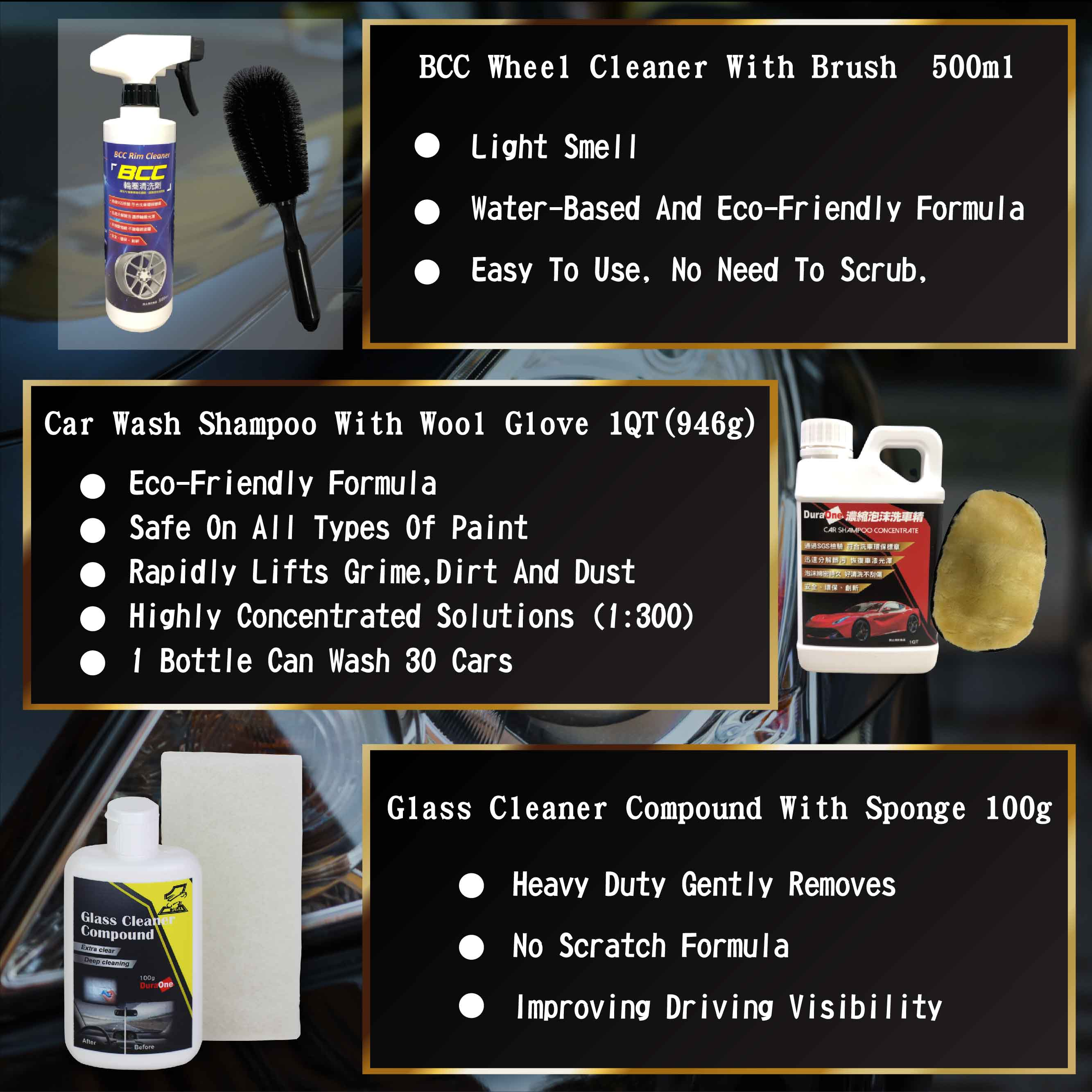 Complete 10 pcs Car Cleaning and Washing set with Car Coating Spray Wheel Cleaner Wash Tool Kit