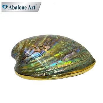 Abalone Art Natural Aquarium Landscape Craft Raw Abalone Shells With Stand In Low Market Prices