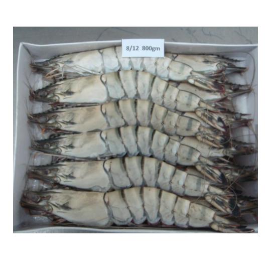 Лидер продаж, экспортер морепродуктов высокого качества, гигантская замороженная свежая черная Тигровая креветка HOSO, быстрая доставка из Сингапура