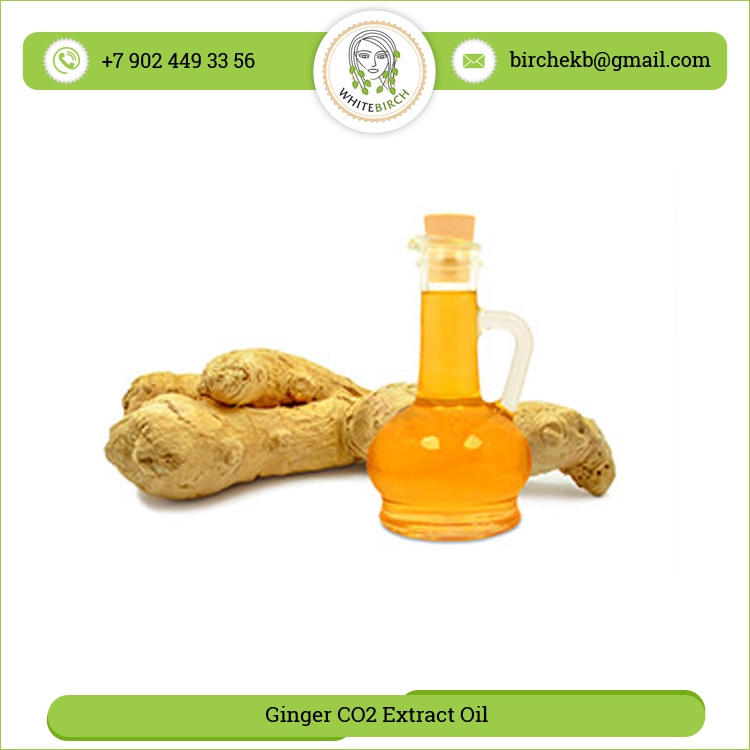 Huge Demand 100% Pure Ginger CO2 Extract Oil