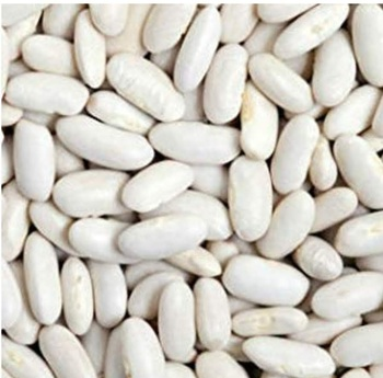 White Beans -BEST QUALITY, BEST PRICES (SPICES LAND FOR EXPORT)