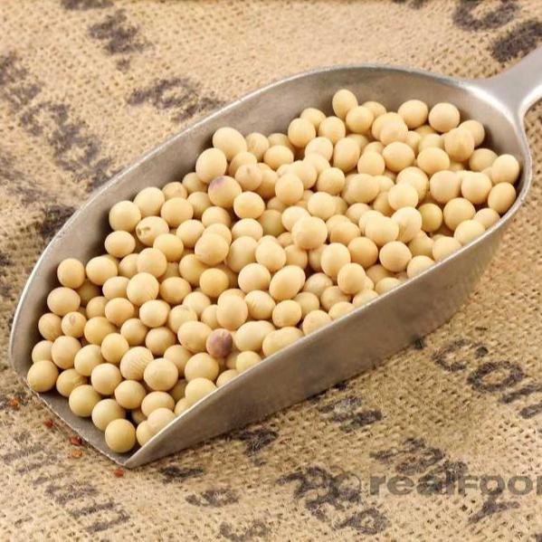 wholesale High Quality Soybean/Soya Bean, Soybean Seeds