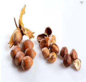 Organic Hazel Nuts HAZEL KERNEL AND HEZEL NUTS IN SHELL