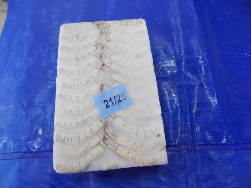 Prawns Frozen Vannamei Shrimps Headless Shell ON (HLSO) For Export
