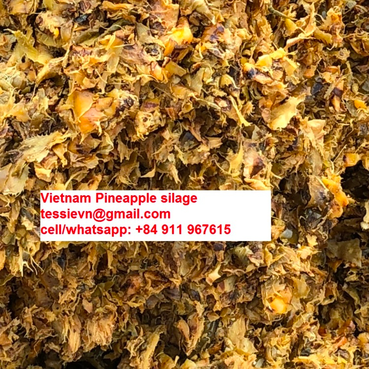 Паста ананаса для корма для животных оптом/ (84 237 8655 789)