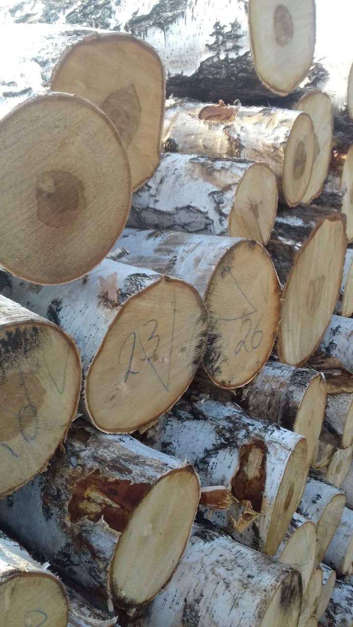 Hard Wood Sapelli / Bubinga / Tali / Iroko / Doussie / for sale