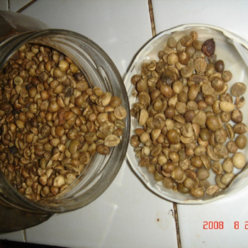 coffee beans from indonesia is the best price and quality