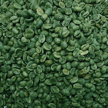 GREEN COFFEE BEAN WITH THE SHOCK PRICE / WHATSAPP: +84 - 979558557