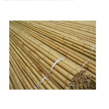 Moso Bamboo poles/ Large bamboo poles/ big diameter bamboo poles construction - Sophie+84703813099