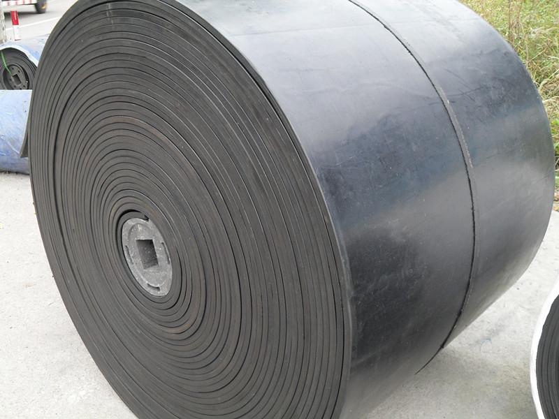 Meter Nylon Conveyor 105