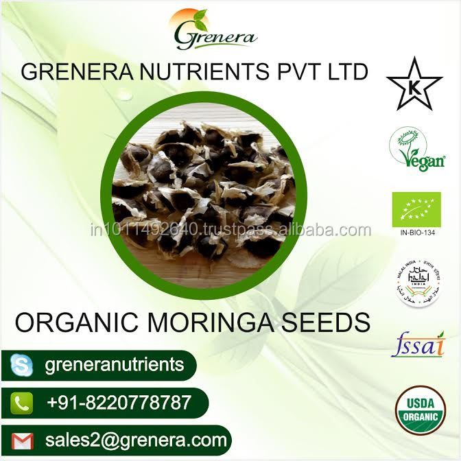 GMP Certified Moringa PKM1 Seeds for Sales