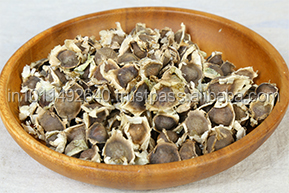 Moringa Seeds / Agriculture Plant Oil Seeds