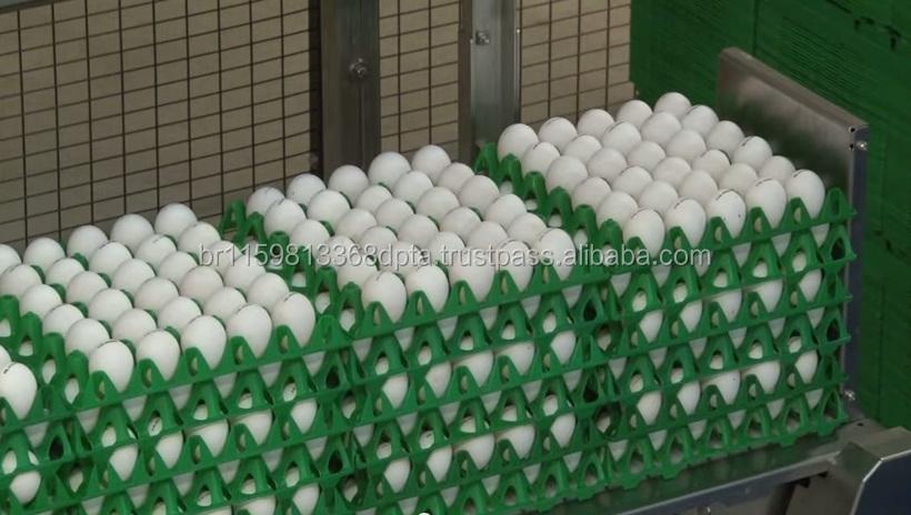 Свежие яйца в бразильском стиле