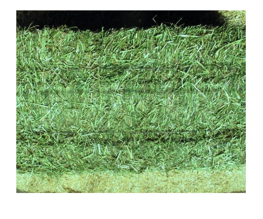 Тюки Eragrostis