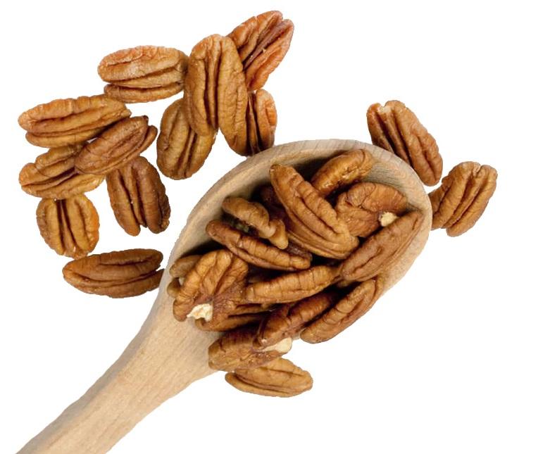Качественные орехи пекан для продажи