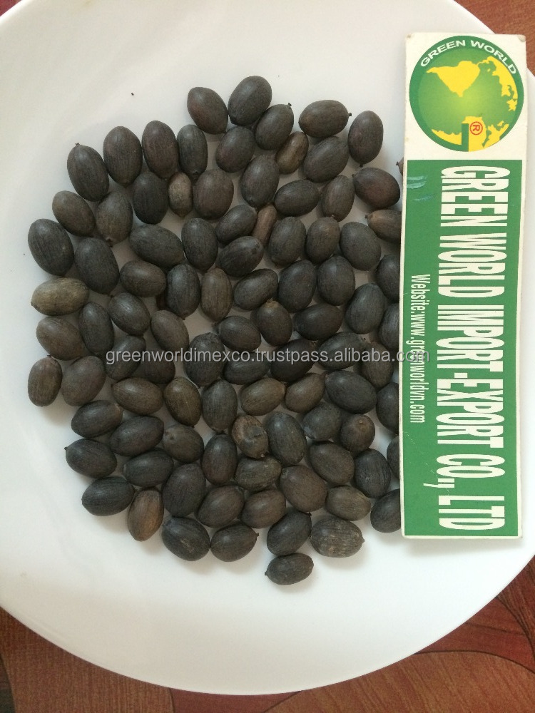 LOTUS SEED WITH ATTRACTIVE AND BEST PRICE EVER FROM VIETNAM