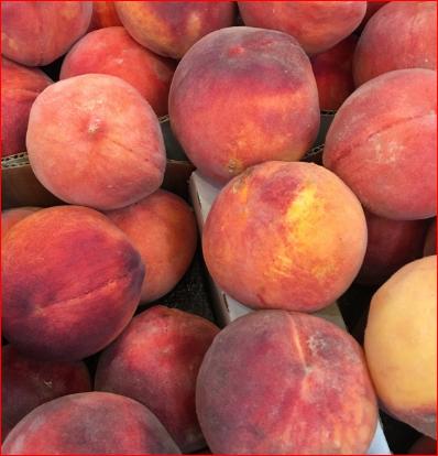 Quality Fresh Peaches for sale