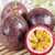 TOP QUALITY! OFFER THE PASSION FRUIT WITH HIGH QUALITY AND BEST PRICE